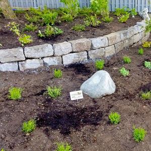 neuen Garten anlgen
